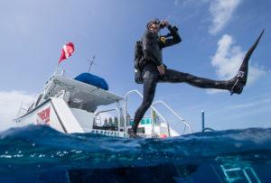 sukeldumiskursused Tallinnas